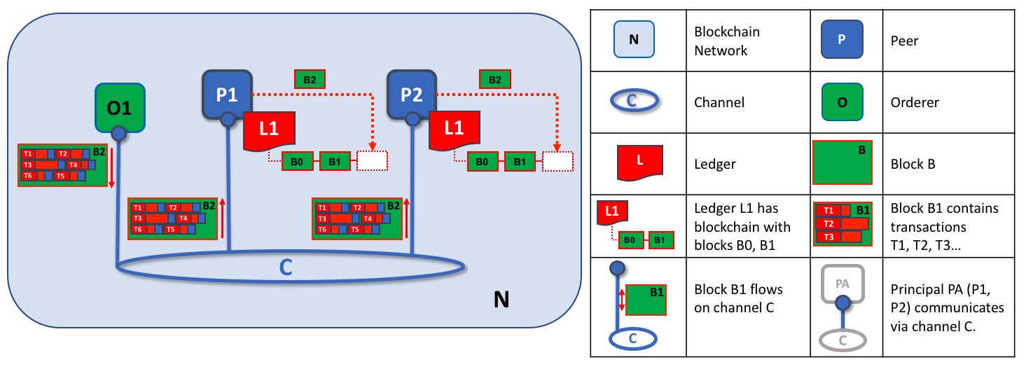 节点和排序服务关系-验证